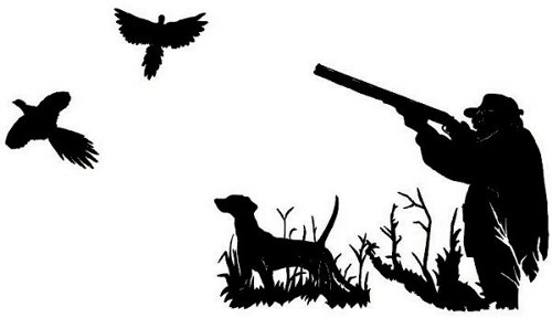 500x288 Pheasant Clipart Bird Hunting