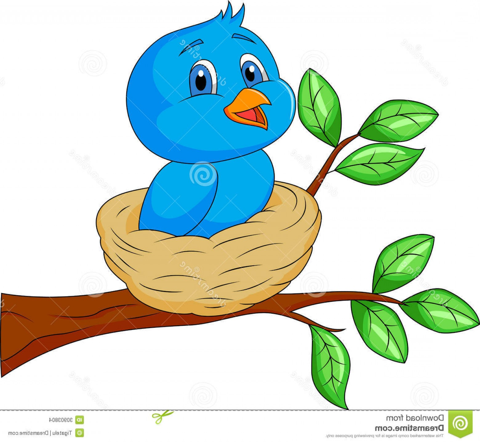 1560x1438 Bird In The Nest Clipart