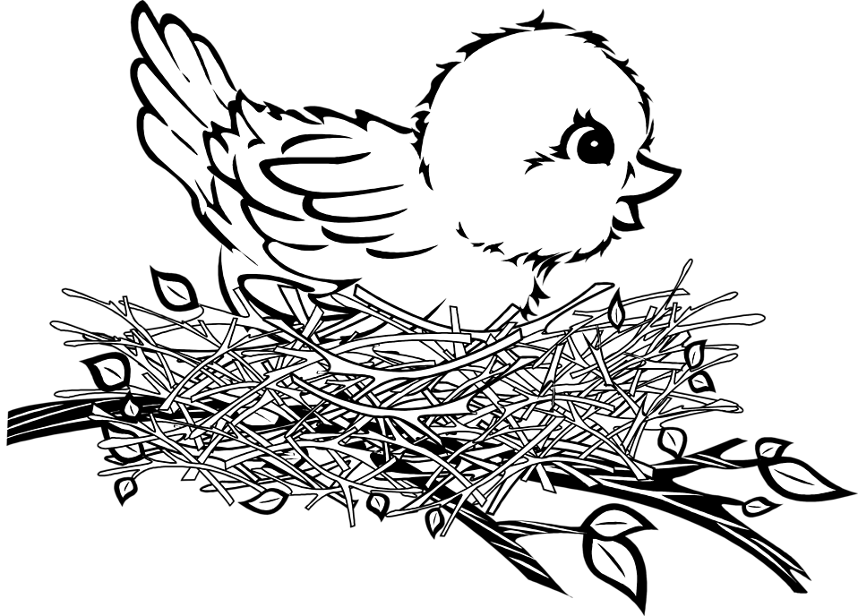 958x688 Bird Nest Black And White Clipart