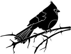 236x178 Clip Art Of Vector Silhouette Of The Bird On Branch Tree K4515632