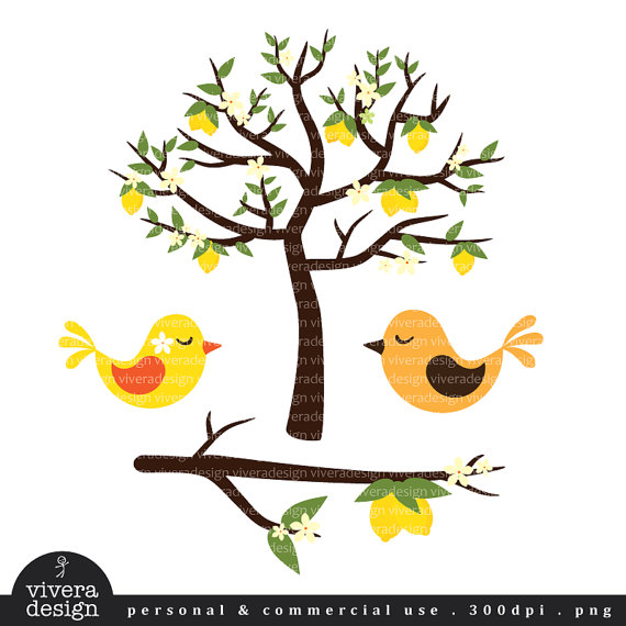570x570 Lemon Tree With Love Birds Digital Clip Art