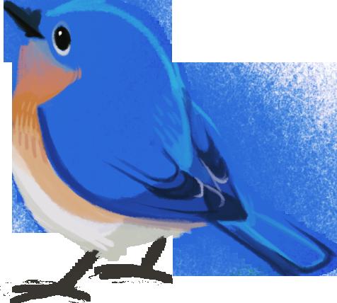 476x428 Birding News 201405 Wild Bird Club