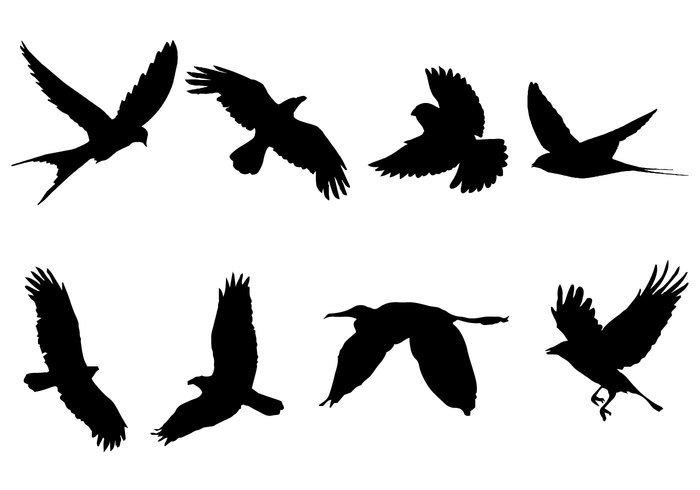 700x490 Bird Of Prey Clipart Flight Silhouette Clip Art