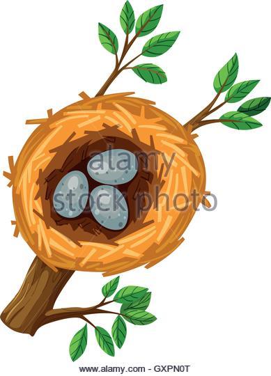 389x540 Bird Nest Stock Vector Images