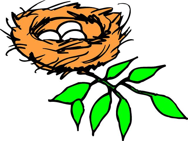 640x482 Cartoon, Bird, Branch, Eggs, Leaves, Nest, Egg