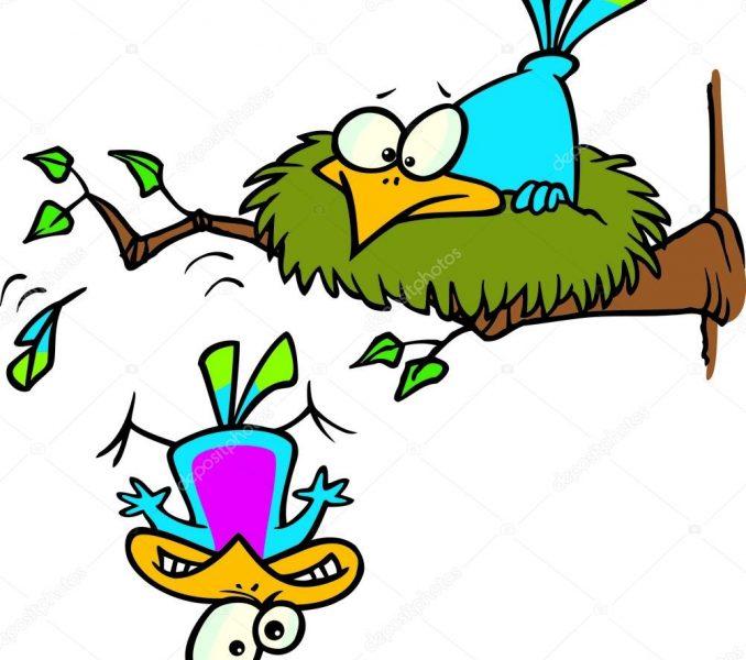 678x600 Cartoon Bird Nest Kids Coloring