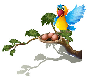 300x266 Illustration Of A Parrot And A Nest On A White Background Royalty