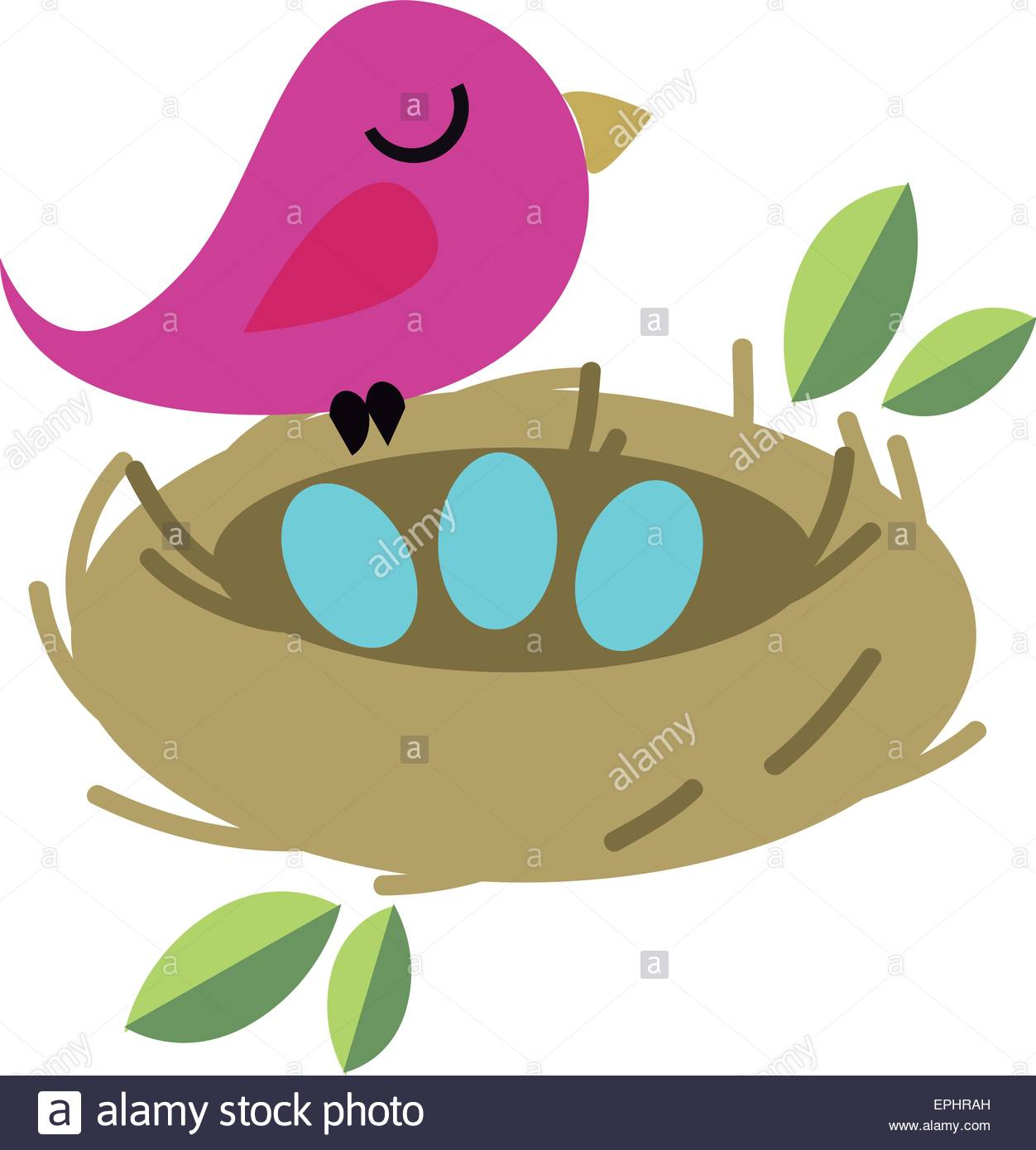 1252x1390 Vector Illustration Of Tiny Bird With Eggs In A Nest. Nature