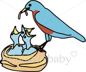 300x254 Bird's Nest Clipart Bird Family