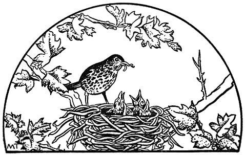 478x303 Nest Clip Art