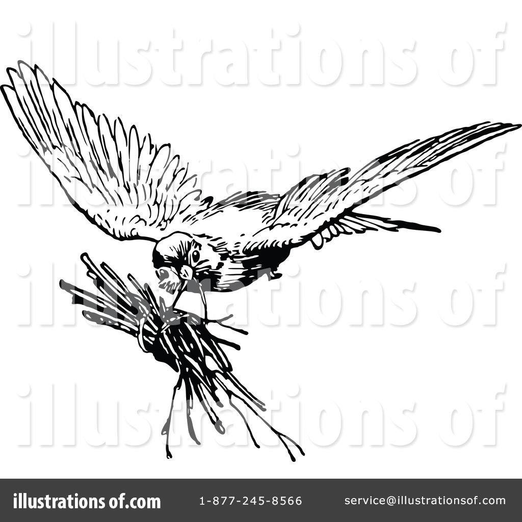 1024x1024 Bird Clipart
