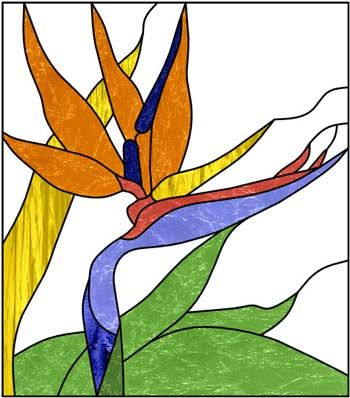 Bird Of Paradise Clipart