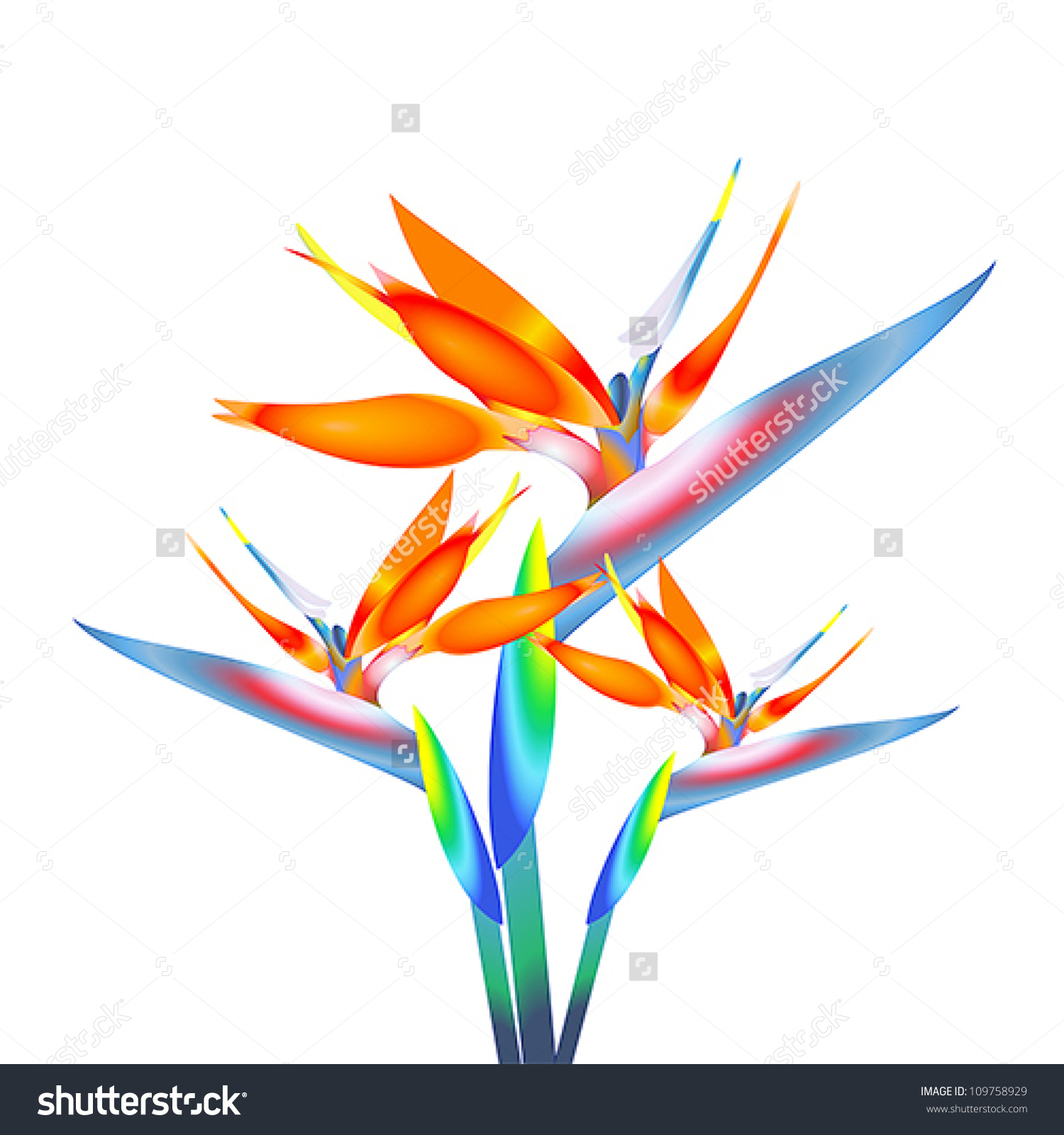 1500x1600 Bird Of Paradise Flower Clipart