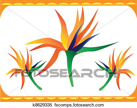 450x356 Bird Paradise Flower Clip Art And Illustration. 1,035 Bird