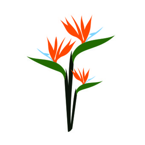 600x600 Birds Of Paradise Svg Cuttable Design