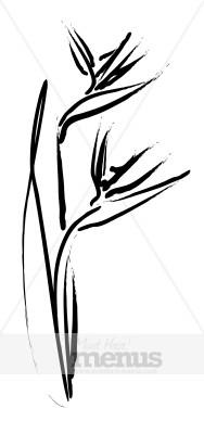 188x388 Flower Sketch Clipart Caribbean Clipart