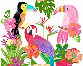 340x270 Parrot Clipart Etsy