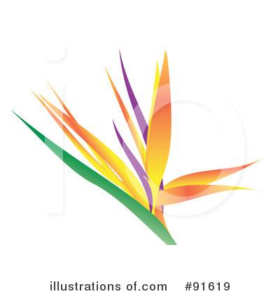400x420 Bird Of Paradise Clipart