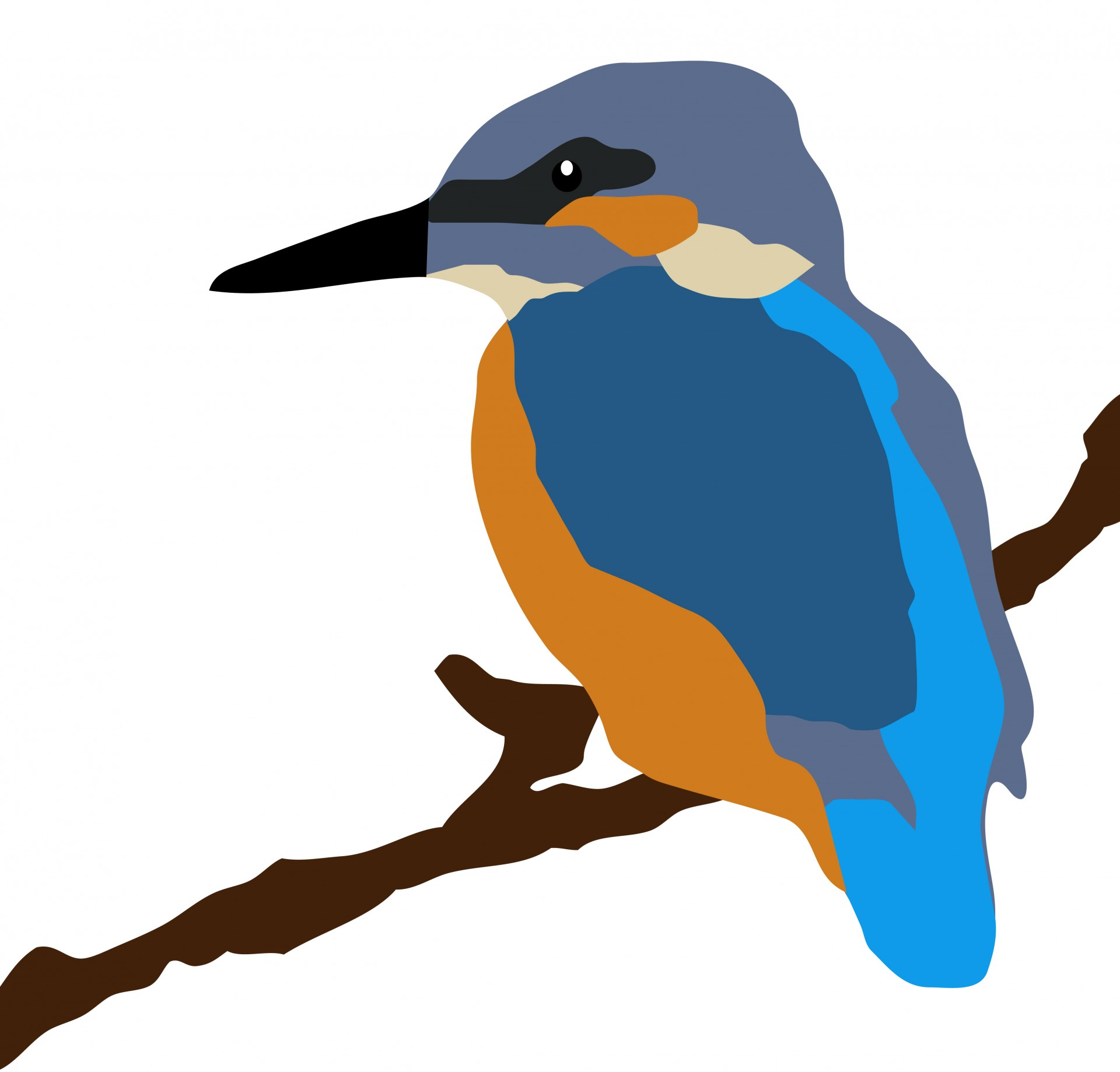 1920x1838 Kingfisher Bird On Branch Free Stock Photo