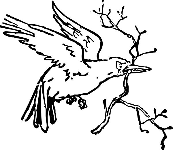 600x519 The Best Bird Clipart Ideas Floral Doodle