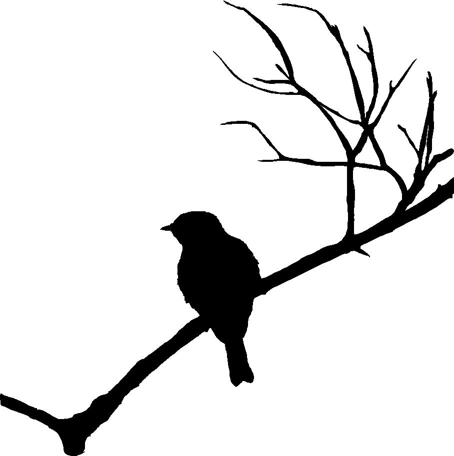 908x913 Bird Branch Silhouette Clip Art