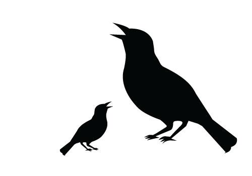 500x350 Copyright Free Bird Silhouette Clipart