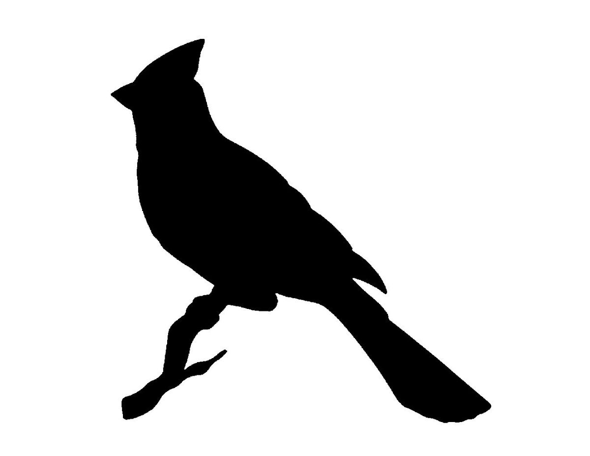 1200x927 Best Bird Outline Ideas Bird Patterns, Photo
