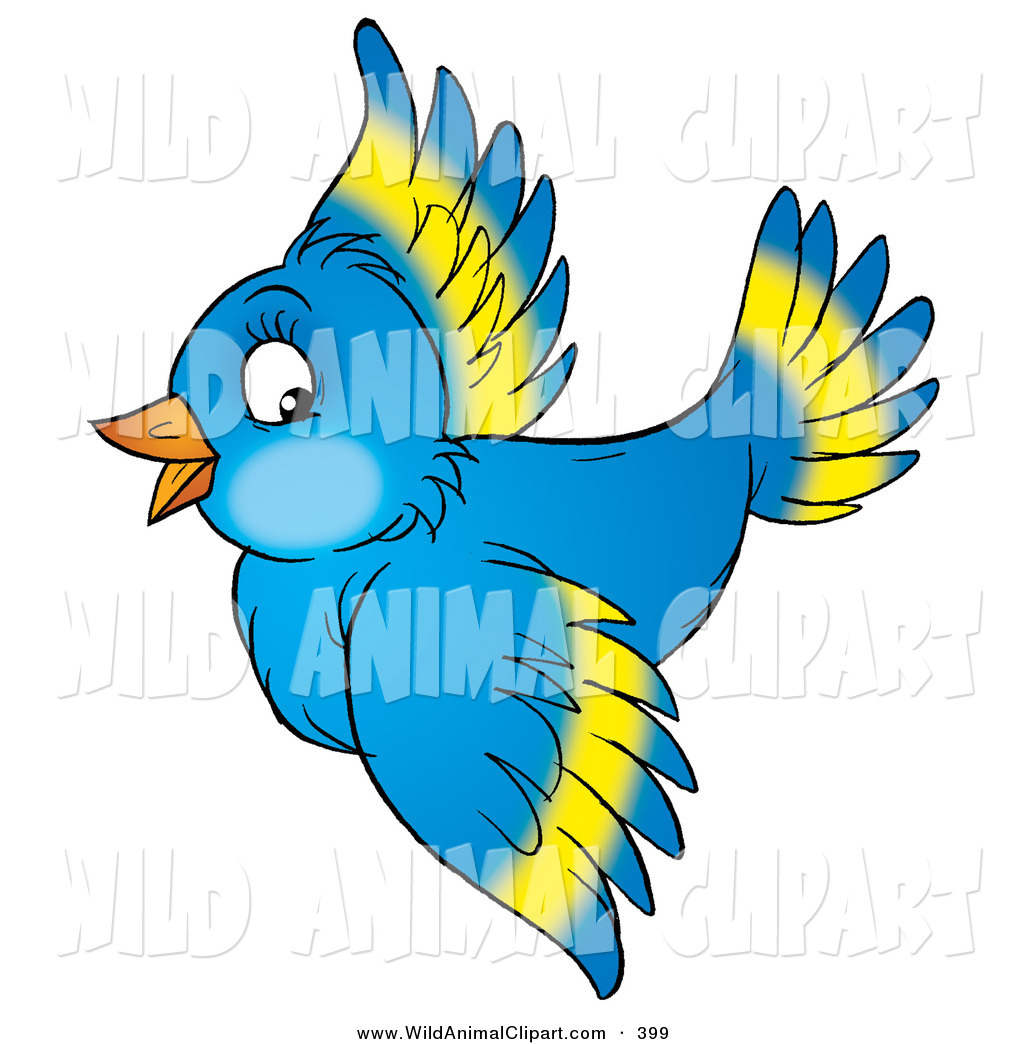 1024x1044 Wildlife Birds Clipart, Explore Pictures
