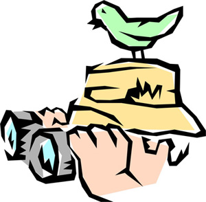 300x294 Bird Watching Group