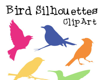 340x270 Bird Clipart School