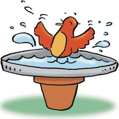 400x400 Birdbath Activity Howstuffworks