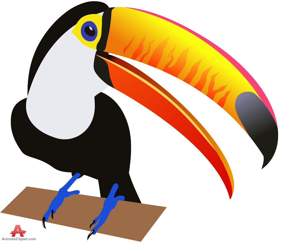 999x822 Birds Animals Clipart Gallery Free Downloads By