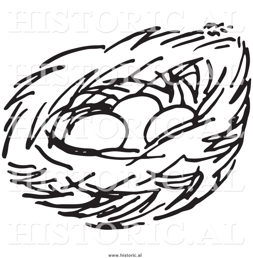 1024x1044 Bird Nest Clip Art Black And White