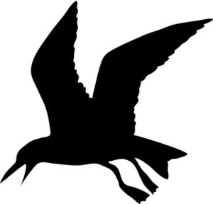 300x288 Sea Bird Clipart Black And White