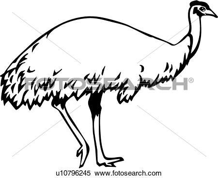450x367 Top 91 Emu Clip Art