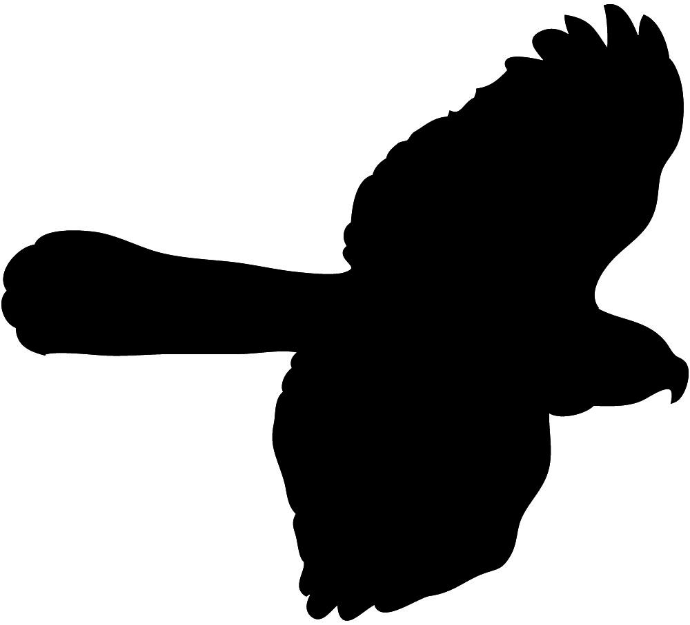 1000x907 Bird Silhouettes