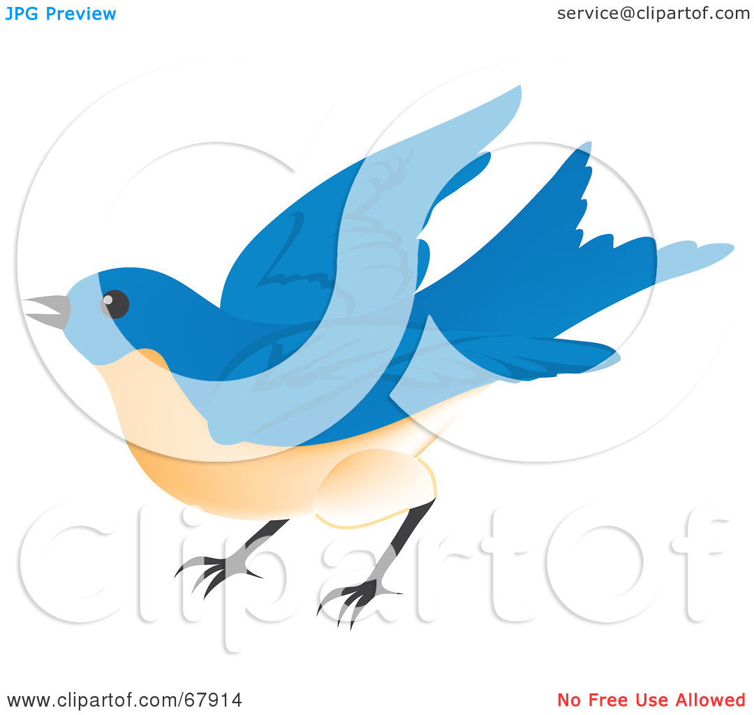 1080x1024 Fly Away Clipart