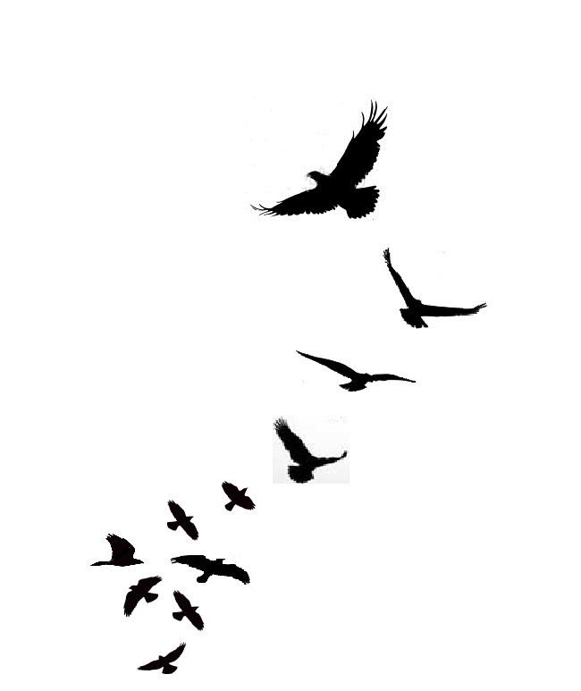 650x773 Flying Birds Clipart