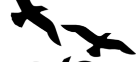 272x125 Silhouette Of Two Birds Flying Free Clipart Design Download