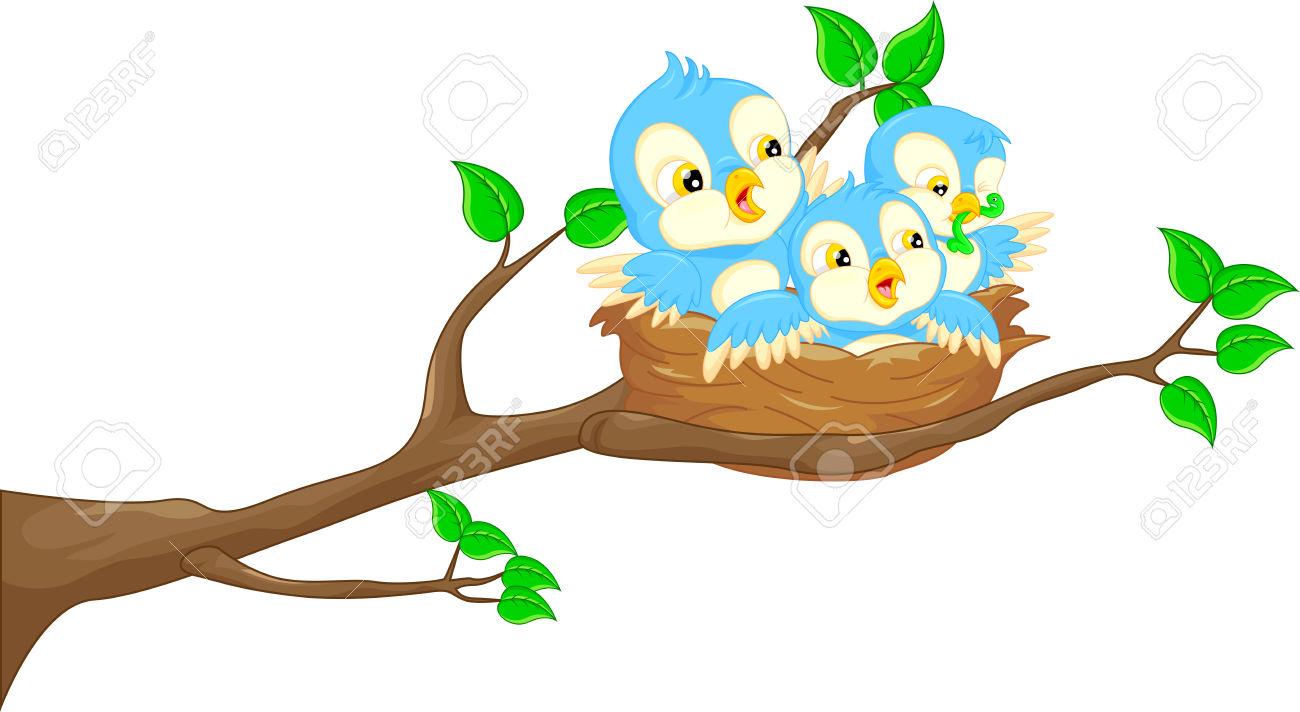 1300x712 Top 97 Nest Clip Art