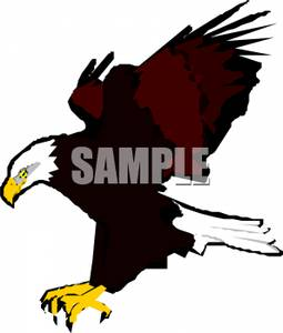 255x300 Art Image A Flying Eagle