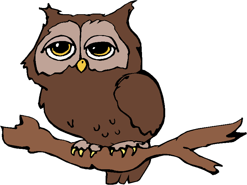 800x600 Bird Of Prey Clipart Cartoon