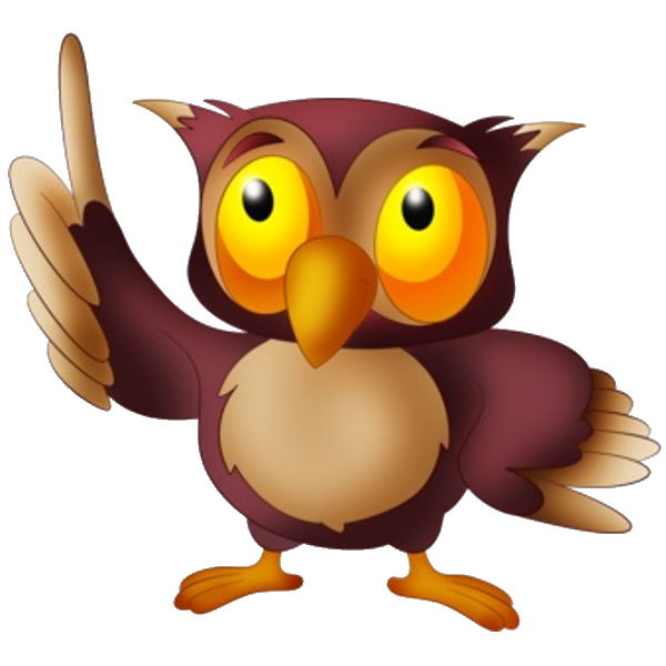 600x600 Owl'S