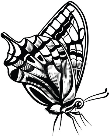 362x450 Decorative Butterfly, Black And White Style Royalty Free Cliparts