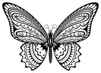 333x240 Drawn Butterfly Black And White