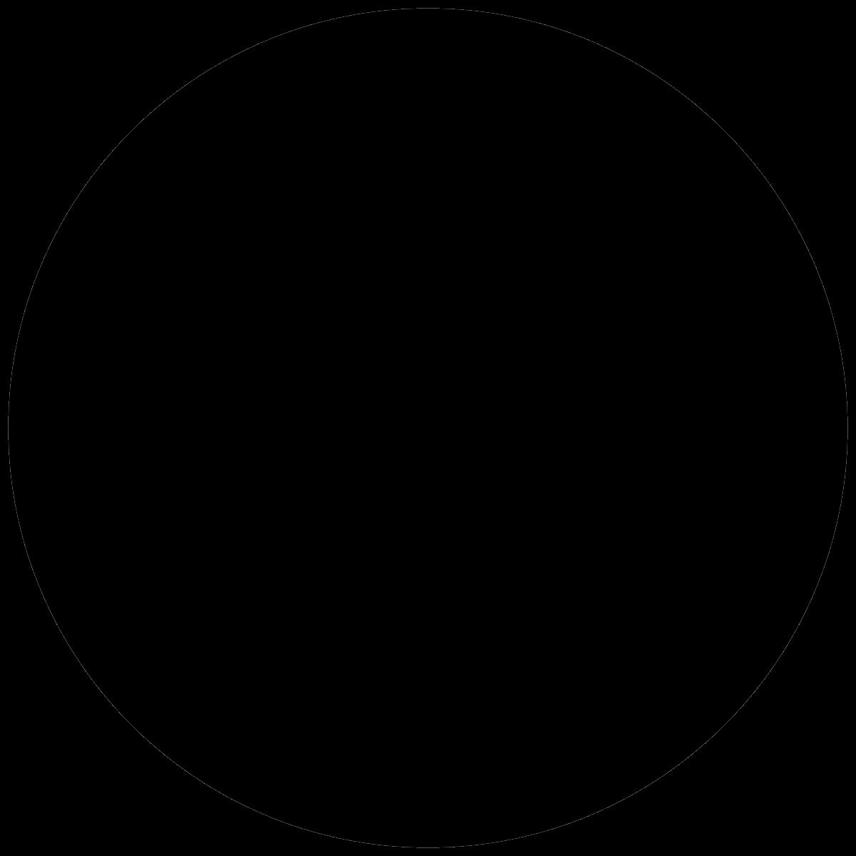 1200x1200 Circle Packing In A Circle