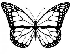 250x190 Black Amp White Clipart Butterfly