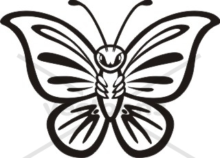 320x230 Butterfly Tattoo Black And White Outline