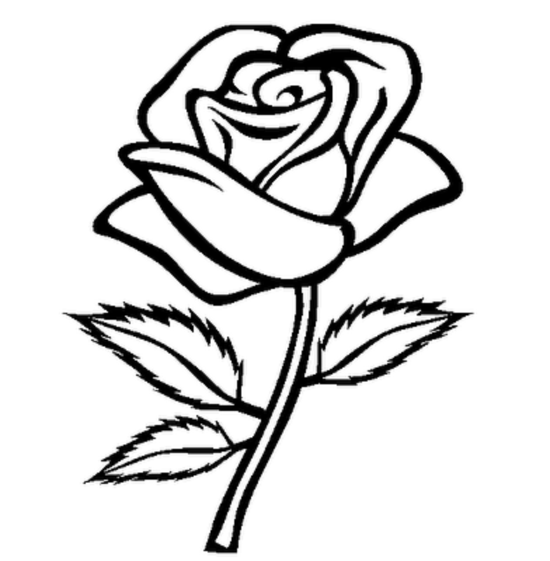 784x800 Rose flower clipart black and white
