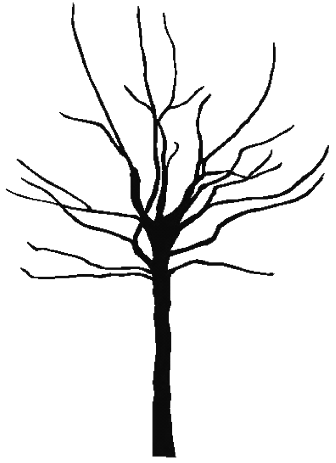 Black And White Clipart Tree